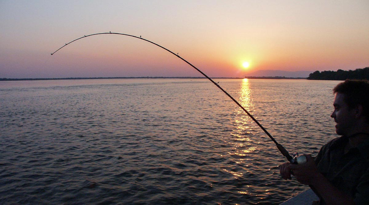 Environment  police issued fine for expats fishing in   prohibited areas