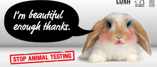 is animal testing really necessary If their safety has already been established through prior animal testing and safe  human use, no further animal tests may be needed if the ingredients are very.